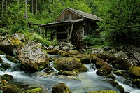 Old mill at the Gollinger Waterfall, Golling, Salzburg, Austria, Europe