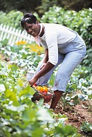 African woman gathering vegetables in garden