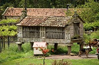 Horreo, Stone, Barn, Galician, Vineyard
