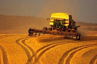 Modern combine finishing the last of the harvest Idaho, United States