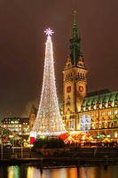 Hamburg Town Hall at Christmas Time, Germany