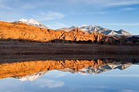 Sandstone cliffs and the La Sal mountains reflect in a backwater of Ken's Lake at sunset, Moab, Utah, USA