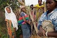 Pita, Republic of Guinea