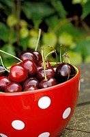 Dotted bowl with cherries