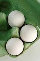 White eggs in green box