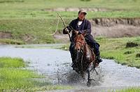 Mongolia, Tov province, Horseman.