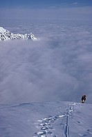 Climber on mount foraker