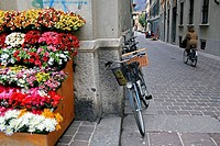 Colourful street with a cycling woman in Como(Italy)