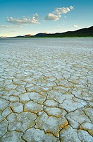 The Alvord Desert, a 60 square_mile dry lake bed in southeastern Oregon, one of the most remote areas of the state.