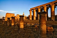 Sunset at Luxor Temple, on the east bank of the Nile, near modern day Luxor or ancient Thebes, Egypt. The temple was founded in 1400 BC.