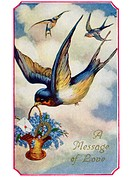A vintage Valentine card with sparrows bringing a message of love