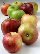 Apples, Royal Gala, Red Delicious, russet, Golden, Fuji,