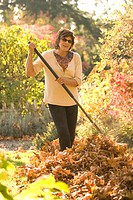 Woman raking autumn leaves