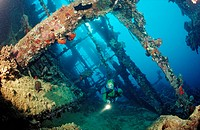 Scuba diver diving on Umbria shipwreck, Sudan, Africa, Red Sea, Wingate Reef