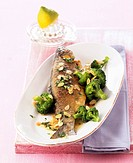 Fried trout with broccoli