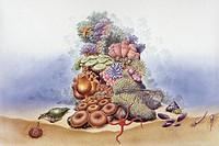 Palaeozoology - Marine floor - Art work