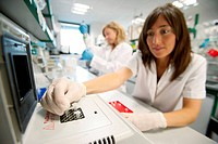 Department of Ischemia and Inflammation, IIBB - Institute for Biomedical Research of Barcelona, CSIC - Consejo Superior de Investigacion Cientifica (S...