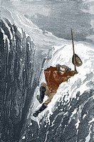 Carl Linnaeus 1707_1778, Swedish botanist, narrowly avoiding falling into a crevasse whilst on an expedition to Lapland, Finland, in 1732. Linnaeus ha...
