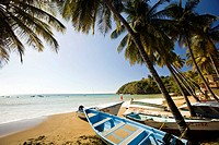 Charming fishing village near Englishman's Bay on the Caribbean side of Tobago NR