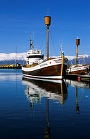Husavik, Iceland, town, city, sea, harbour, harbor