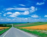Road in the country (thumbnail)