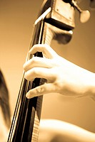 Contrabass