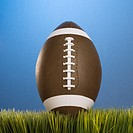 Studio shot of football resting in grass