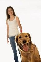 Golden Retriever dog on leash with adolescent female Caucasian