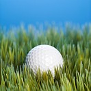 Studio shot of golfball resting in grass