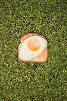 Fried egg on toast in grass.