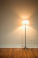 Still life of floor lamp on hardwood floor