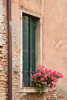 Window with closed shutters and geranium flowers in Venice, Italy