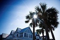 House with palm trees on Bald Head Island, North Carolina