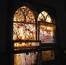Sunlight glowing through dilapidated arched windows covered in vines creating dreamy mood