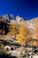 gran paradiso national park, piedmont, italy