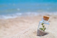 scenery, glassbottle, sea, sand, beach, landscape, bottle