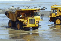Rigid dumper trucks during construction of stone groyne rock armour sea defences (thumbnail)