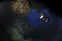 Diver swimming through cavern with torch, Grand Cayman Island, Cayman Islands, Caribbean
