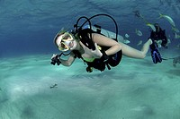Bikini Diver at Stingray City Sandbar, Grand Cayman Island, Cayman Islands, Caribbean