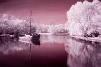 blossom, bathe, blooms, bloom, beauty, boat, atmosphere