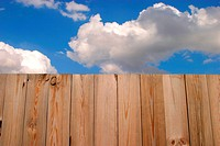 burkhard, CLOSE, close_up, fence
