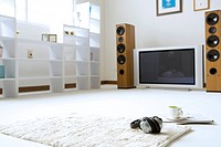 Ground view of a living room with shelf, speaker, television