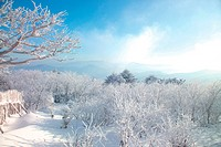 scene, snow, sky, winter, mountain, view, tree