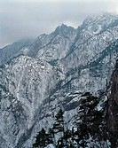 Winter, scenery, season, tree, snow, mountainous, nature (thumbnail)