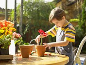 Boy planting flowers