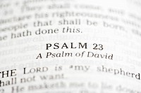 Selective focus of Psalm verses in open Holy Bible