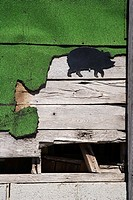 Wooden siding with green turf and pig drawing