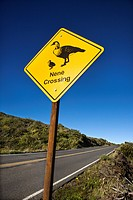 Shot of 'Nene Crossing' road sign in Haleakala National Park, Maui, Hawaii