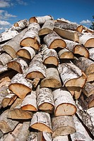 Building Material, Close_Up, Collection, Day, Heap