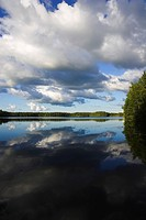 Cumulus Cloud, Dark, Day, Lake, Lush Foliage